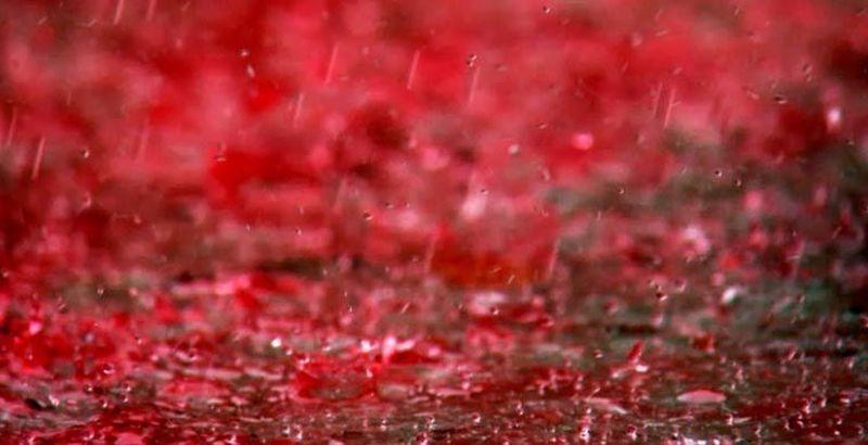 Кровавый дождь