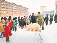 Медведица Айка